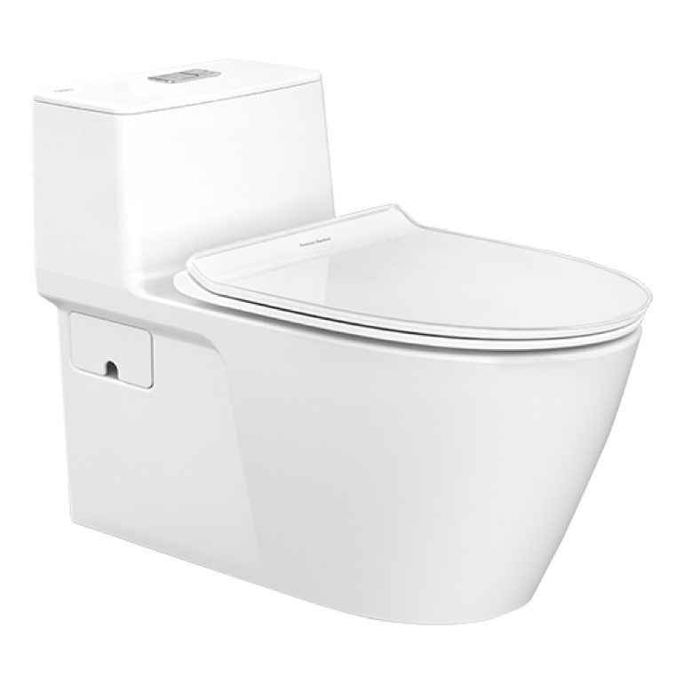 toilets-one-piece-toilet.png